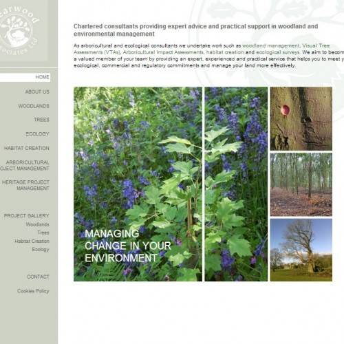 Bearwood Associates' new website