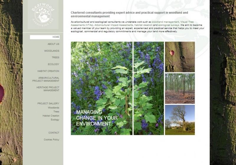 Bearwood Associates' new website
